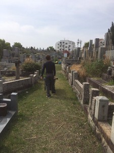 1墓地全景